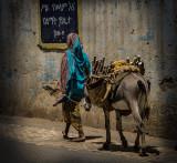 Alleyway in Harar