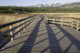 Bird Reserve at Turnagain Arm