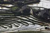 Rice fields around Sapa