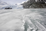 Portage glacier cruise