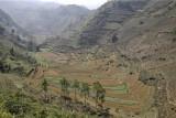 Fields around Can Cau