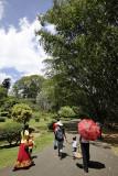 Kandy Botanic Garden