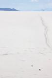 Uyuni Salar from Incahuasi Island