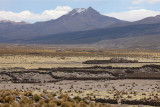 From Sajama National Park to Oruro