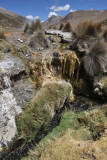 Sajama National Park, Geyser Field