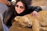 Interaction with lion cub at Lion Safari Park