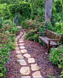 Mount Botanical Gardens