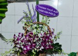 Thuong Tiec_020.jpg