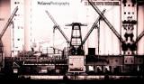 Urban Port