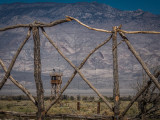 GALLERY COLLECTION::  Manzanar - Let Us Remember