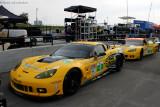 GT--Corvette Racing