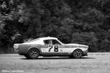 19TH FRENCH HICKMAN/JIM SPECK   Shelby GT350