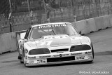11T LYN ST JAMES  MUSTANG 11GTO