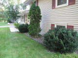Front yard before landscapings