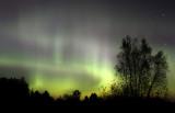 Aurora_1382.jpg