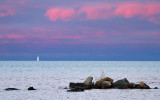 Lake Superior Sunset_2528.jpg