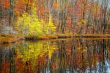 Perch Lake, late fall
