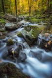 Magic Creek