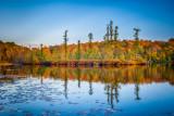 bog on Audie Lake