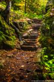 Hobbit steps