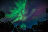 Aurora angel
