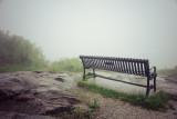 on a rainy, foggy day