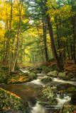 A favorite creek 1