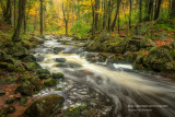 A favorite creek 2