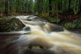Creeks are running high 2