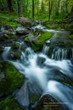 A favorite creek