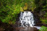 Spruce Falls