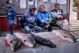 Qaqortoq Fishermen