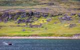 The Hvalsey Ruins