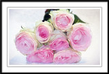 Smudged pink roses...