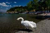 Gorica Beach, Lake Ohrid