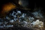 Ledena Pecina (ice cave) 2160m in Obla Glava massif, Durmitor NP