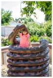 Reptile Gardens playground