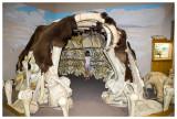 Model bone hut