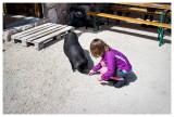 Friendly pig at Rifugio Passo Pordoi