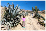 Norah poses with a large agave