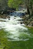 736 Yosemite stream.jpg