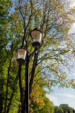 Lantern And Sunny Trees