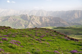 Landscape Of Alborz Range