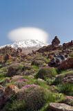 Awesome View Of Mt. Damavand