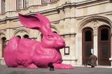 Quaint Pink Hare