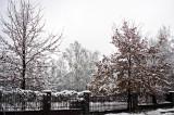 Fall Or Winter