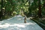 m in Kasuga-taisha @f11 M8