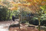 Momiji-dani in Miyajima @f5 QS1