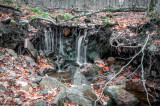 Waterfalls Nov 2014 11.jpg