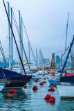 Hong Kong Yacht Club
